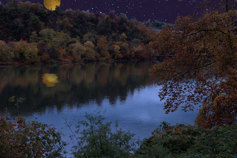 River Under Moonlight